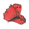 Pretty Red Butterfly